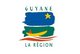 Country flag of French Guiana