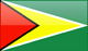 Country flag of Guyana